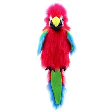Amazon Macaw - Large Birds